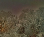 Snowy Night Photos - Snowy Night by Janice Spivey