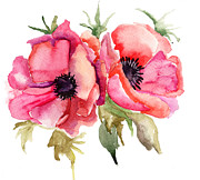 Regina Jershova - Stylized Poppy flowers...