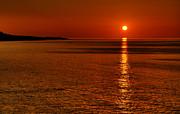 Svetlana Sewell - Sunrise