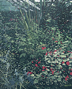Malcolm Warrilow - The Botanical Gardens