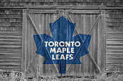 Hockey Photos - Toronto Maple Leafs by Joe Hamilton