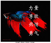 Virtues Prints - 4 Virtues Siamese Fighting Fish #1 Print by Richard De Wolfe