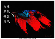 Richard De Wolfe Prints - 4 Virtues Siamese Fighting Fish #2 Print by Richard De Wolfe