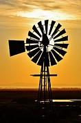 Waterpump Posters - Windmill Waterpump Poster by Werner Lehmann