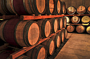 Cellar Photo Prints - Wine barrels Print by Elena Elisseeva