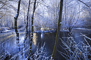 Snowy Stream Prints - Winter Print by Svetlana Sewell