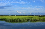 Tidal Photographs Posters - Wrightsville Beach Marsh Poster by Michael Weeks