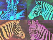 Zebra Paintings - 4 Zebras  by Scott Dokey