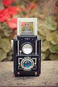 Aperture Prints - Old vintage camera Print by Sabino Parente