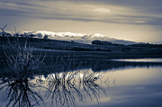Positive Metal Prints - Landscape - photography Metal Print by Lyubomir Kanelov