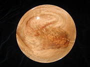 Elegant Sculptures - 485 Large Handcrafted Camphor Wood Serving Bowl by Jack Lewis
