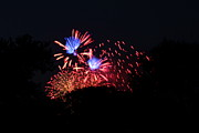 July Metal Prints - 4th of July Fireworks - 011319 Metal Print by DC Photographer