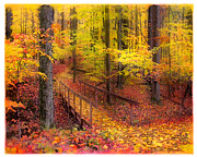 Gina Signore - Autumn footbridge