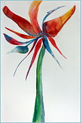 Flower Drawings Originals - Bird of Paradise by Mindy Newman