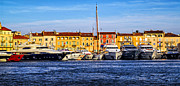 Water Vessels Photo Prints - Boats at St.Tropez Print by Elena Elisseeva