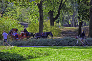 Bicycling Photos - Central Park Afternoon by Madeline Ellis