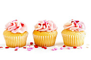 Row Photos - Cupcakes by Elena Elisseeva
