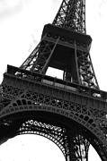 Background Framed Prints - Eiffel Tower Framed Print by Jacqui Martin