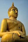 Buddhist Art - Golden Buddha by Adrian Evans
