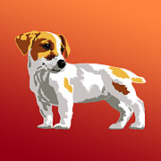 Jack Russell Terrier Print by R L Nielsen