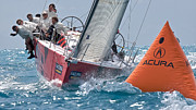 Sailboat Ocean Photos - Key West Regatta by Steven Lapkin