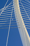 Calatrava Photos - Margaret hunt hill bridge by Elena Nosyreva