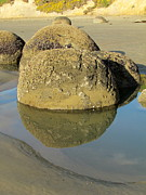 Joyce Woodhouse Posters - Moeraki Boulders Poster by Joyce Woodhouse