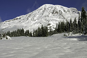 Bob Noble Photography - Mount Rainier from...