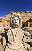 Gorgon Photo Posters - Sculpted Medusa head at the Forum of Severus at Leptis Magna in Libya Poster by Robert Preston