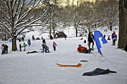 Wintry Photo Prints - Snowboarding  in Central Park  2011 Print by Madeline Ellis