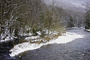 Trout Photo Posters - Spring Snow Williams River  Poster by Thomas R Fletcher