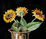 Sunflowers Paintings - Sunflowers by Irina Sztukowski