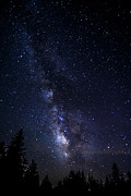 D800 Posters - The Milky Way over Cranberry Wilderness Poster by Thomas R Fletcher