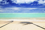 Vacations Photo Prints - Tropical beach Print by Elena Elisseeva