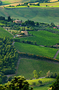 Wines Prints - Tuscany Print by Brian Jannsen
