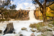 Tim Hester - Waterfall