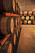 Storage Metal Prints - Wine barrels Metal Print by Elena Elisseeva