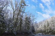 Trout Digital Art - Winter along Williams River by Thomas R Fletcher