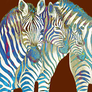 Horse Drawing Mixed Media Framed Prints - Zebra - stylised drawing art poster Framed Print by Kim Wang