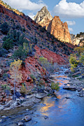 Zion National Park Posters - Zion National Park Poster by Utah Images