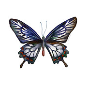 Ceylon Prints - 54 Ceylon Rose Butterfly Print by Amy Kirkpatrick