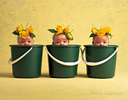 Buckets Framed Prints - Untitled Framed Print by Anne Geddes