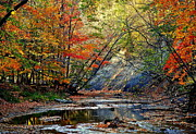 Unreal Photo Framed Prints - Autumn Stream Framed Print by Robert Harmon