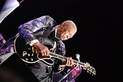 Phill Potter - B B King