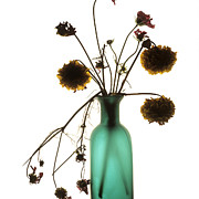 Bottle Photos - Bouquet by Bernard Jaubert