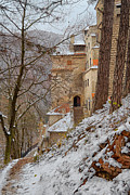 Medieval Entrance Prints - Bran Castle Print by Gabriela Insuratelu