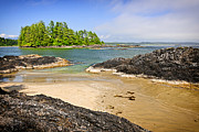 Rim Framed Prints - Coast of Pacific ocean on Vancouver Island Framed Print by Elena Elisseeva