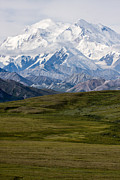 North America Metal Prints - Denali National Park Series Metal Print by Josh Whalen