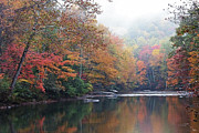 Williams River Scenic Backway Posters - Fall Color Williams River Poster by Thomas R Fletcher