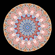 Symmetry Prints - Kaleidoscope Anatomical Illustrations Seriesi Print by Amy Cicconi